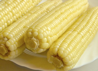 Closeup of sweet boiled corn