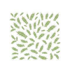 Spring leaf frame for your design