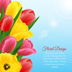 Tulip design background