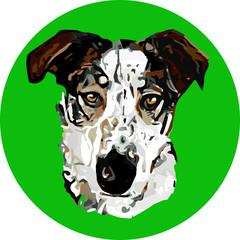 Artsy dog on green circle