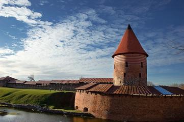 Castello di Kaunas