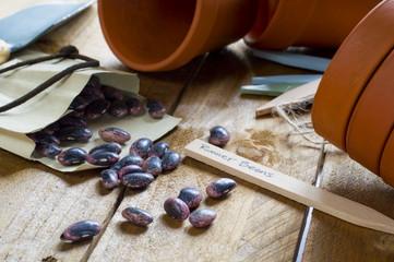 Gardening - Runner Bean Seeds