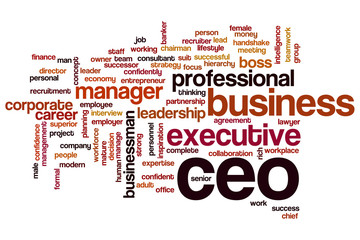 CEO word cloud