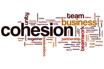 Cohesion word cloud
