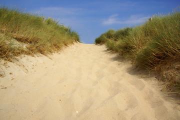 Weg zum Strand über die Düne