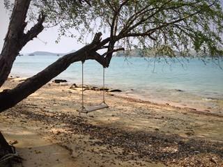 качели на дереве у моря