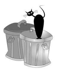 black cat on garbage cans