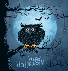 Owl on tree and bat-vampire flying in night sky