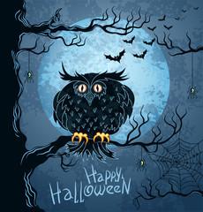 Owl on tree and bat-vampire flying in night sky