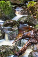 Wasser Wurzel Kaskade