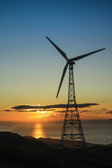Wind turbine at sunset in an eolic park