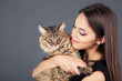 Beautiful young woman holding cat on gray background