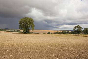 chalky agricultural landscape