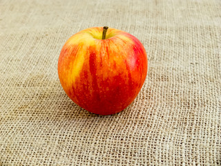 Single red apple on canvas