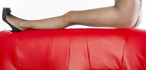 Woman's legs in black fishnet tights