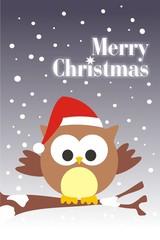 Buho Merry Christmas