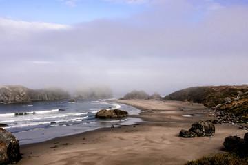 Foggy Morning On An Oregon Beach
