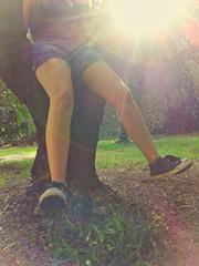 Ragazza seduta su un albero d'ulivo
