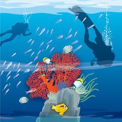 Atoll - Coraux et plongeurs