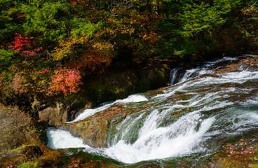 奥日光 竜頭の滝の紅葉