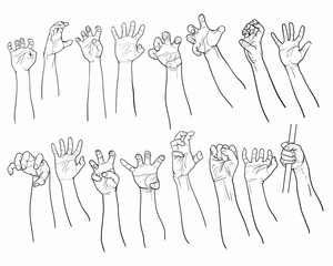Set of hands in many gesture