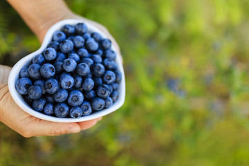 Blueberries - healthy fruits