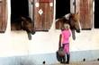 fillette caressant un cheval à l'écurie - 69518306