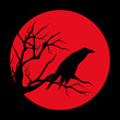 raven bird ominous design