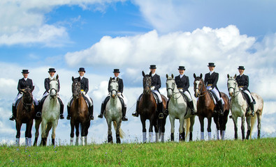 Group of eight riders on the hill. Equestrian sport - dressage.
