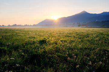 Morning in Bavaria
