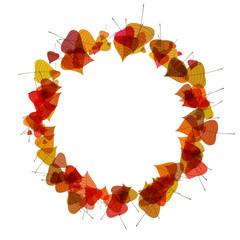 Autumn leaves in a circle. Raster