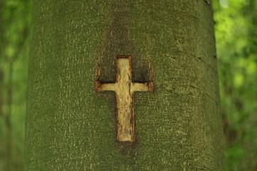 Brennendes Kreuz im Baum