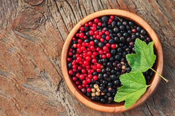 Bllack and red currant and green leaves in wooden bowl.