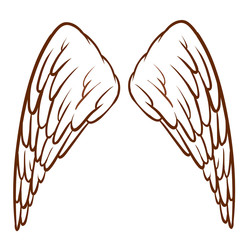 An angel's wings