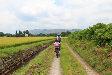 田園風景とサイクリング