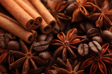 Cinnamon sticks, star anise and coffee beans