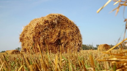 Field With The Hay, slider