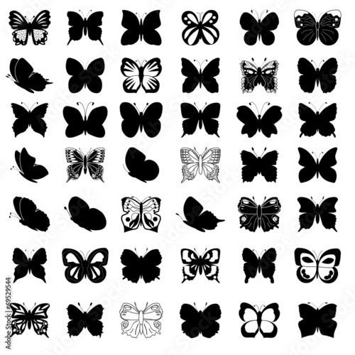 Greate kolekcja motyli