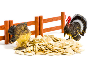 Colorful turkey toy and seeds