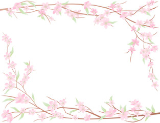 blloming branches frame