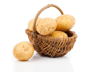 Golden Potatoes in wicker basket over white background