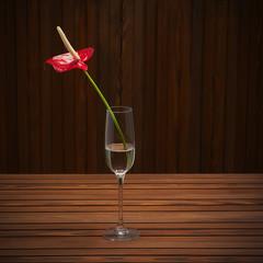 Red anthurium (Flamingo flower; Boy flower) in glass vase on woo