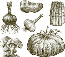 drawn vegetables