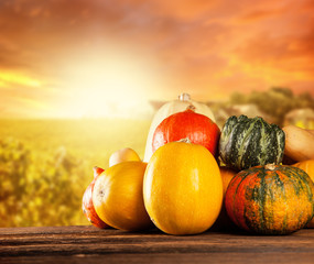 Autumn colored pumpkins on wooden table