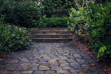 Stone steps in the old garden