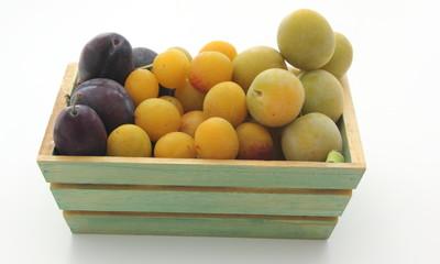 Variétés de prunes