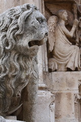 Leone stiloforo Cattedrale di Altamura