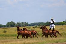 """Постер, картина, фотообои """"horse riding"""""""