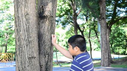 Boy feeding squirrel at summer day. HD