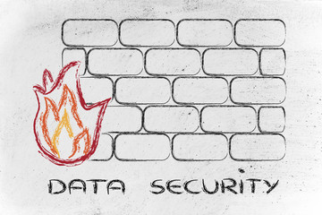funny firewall design and internet security